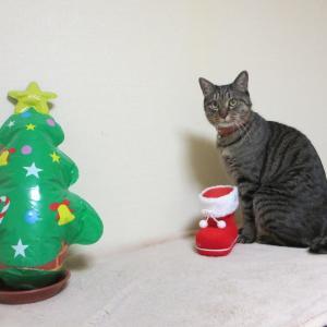 さあ来い、クリスマス