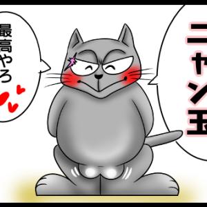 愛しのニャン玉〜💕