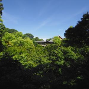 京都@夏の思い出 2