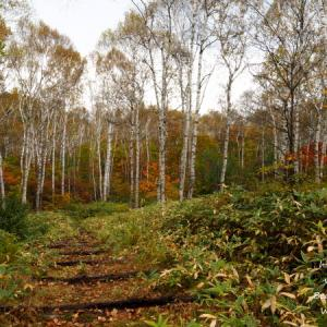 秋の長野・ビーナスラインを行く 8