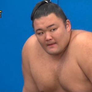【筋トレ】力士の様な丸太腕の作り方