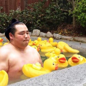【大相撲】横綱・鶴竜、春場所出場を明言