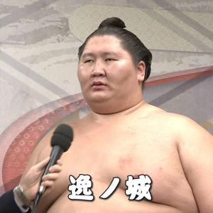 平成天皇「逸ノ城はどうなの?」八角「あれは幕下になります」←陛下ブチギレwwwwww