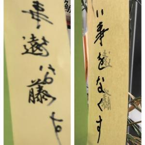 【大相撲】藤井アナ「目標を考えてみたらどうですか?」遠藤関「考えてみます(食い気味)」
