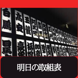 【明日の取組】照ノ富士ー朝乃山 白鵬ー正代