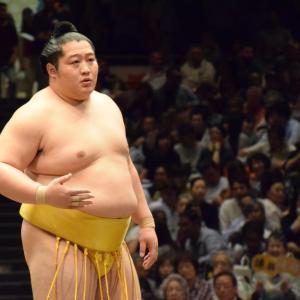 ストリートファイトでは相撲ファイターが最強という事実…