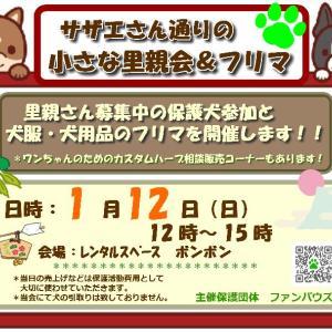 明日は里親会開催日です!!