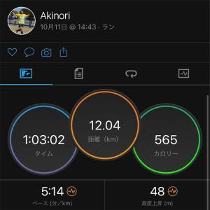 やっと12km走れた