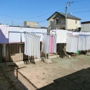 洗濯日和です