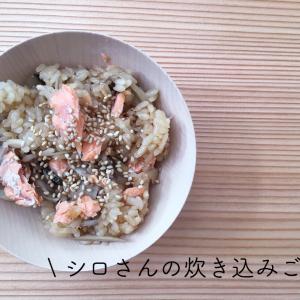 ■ きのう何食べた?シロさんの炊き込みご飯でお弁当 ■