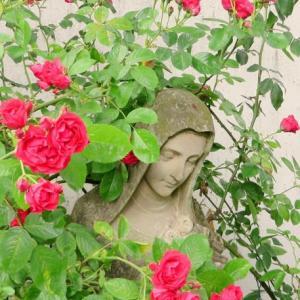 聖母マリア・アセンデットマスター