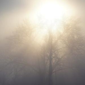 心は50%が光で50%が闇。自分の闇と向き合うと強くなる。