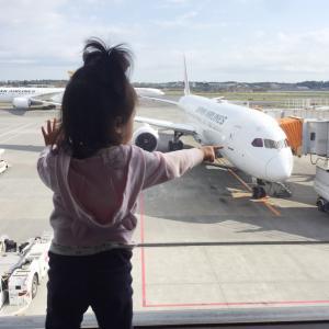 毎回ハラハラ!小さな子連れグアムの飛行機での過ごし方