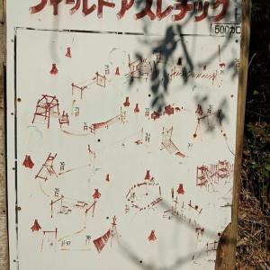 横浜の秘境アスレチック
