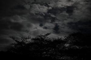 ざわつく夜