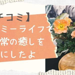 人気のお花の定期便ブルーミーライフを口コミ!癒し目的で始めてみた☆