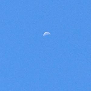 新月と開業届け