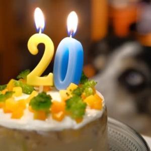 欧介、20回目のお誕生日