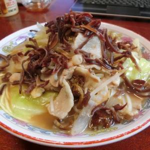 自宅で作る特製チャンポン麺!万能中華など調味料も紹介
