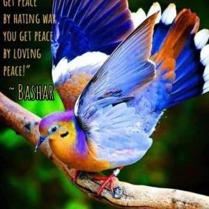 バシャール:平和を愛することによって  平和を得ることができます