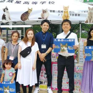 名和公園お祭りに参加して。