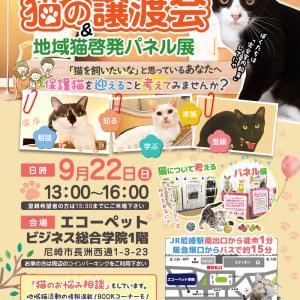 開催間近★第21回 譲渡会&地域猫啓発パネル展