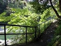 変わらない東京奥多摩の自然、変わる東京の街並み  변하지 않는 도쿄오쿠타마의 자연, 변하는 도쿄의 거리  (12回)