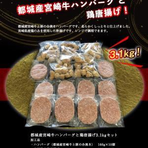 申込完了☆宮崎牛ハンバーグ&鶏唐揚げ大容量3.1kgセット!
