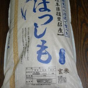届きました☆岐阜県特産米「はつしも」特別栽培米です!ふるさと納税 返礼品 口コミ