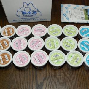 届きました☆宮城県白石市 Hybrid スーパーマルチアイスBOX24 (4種24個セット) ふるさと納税 返礼品