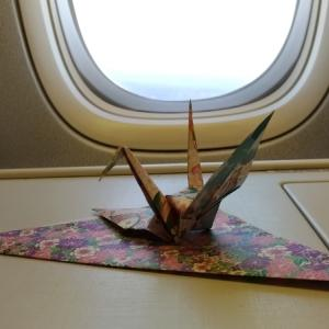 2019 特典航空券で行くカナダ旅行⑪ 〜エアカナダAC62便 仁川→トロント搭乗記 後編〜