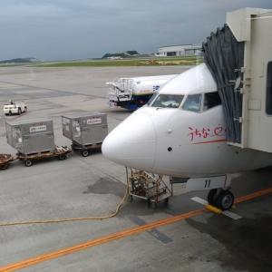2019 セントレア日帰りヒコーキで行く沖縄ランチ旅行記② 〜JTA43便 搭乗編〜
