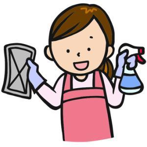 ミニマリストは掃除機不要!雑巾で十分!