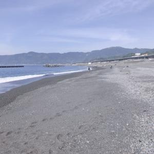 5月3日~蒲原海岸釣果~