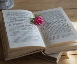 聖なる小説