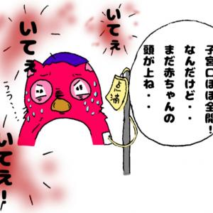 775,出産レポ③ 子宮口全開になったのに?!