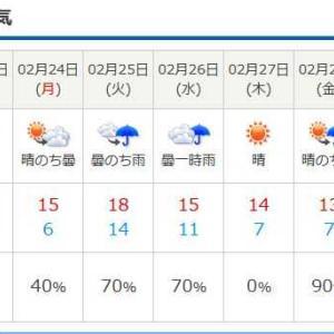 野母崎の天気