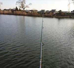 初釣りに行ってきました。