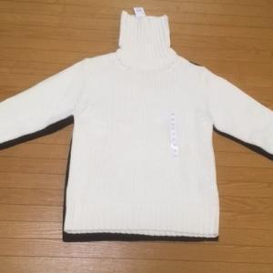 理想のタートルネックセーターを求めて