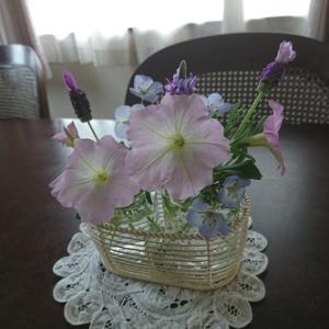 お花の自給自足