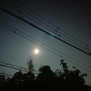 昨日のお月様🌕