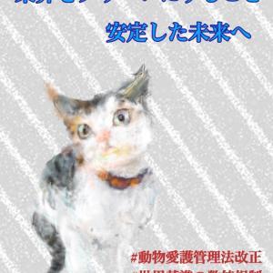 2020/06/01 動物愛護管理法 罰則規定