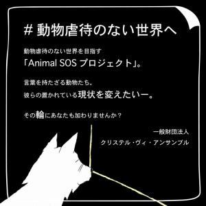 #動物虐待のない世界へ