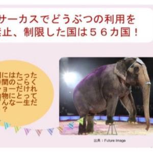 展示動物の本当は…