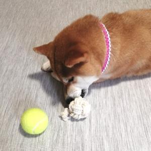 ロープでボールを作ってみた