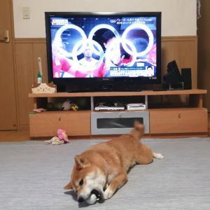 オリンピック観てるっすよー