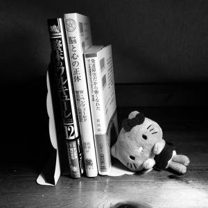 今日の本棚(発達障害・脳・釈迦)