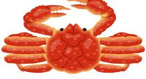 ズワイ蟹しゃぶ1kgセット 食べ方ガイド付~北海道弟子屈町【ふるさと納税】