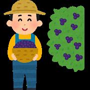 ミルティッリ(ジェラートケーキ)~鹿児島県南種子町【ふるさと納税】