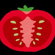 川助農園のフルーツトマト1.5kg以上(最大糖度15.3度!!)~愛知県津島市【ふるさと納税】